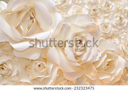 Beautiful white rose background - stock photo