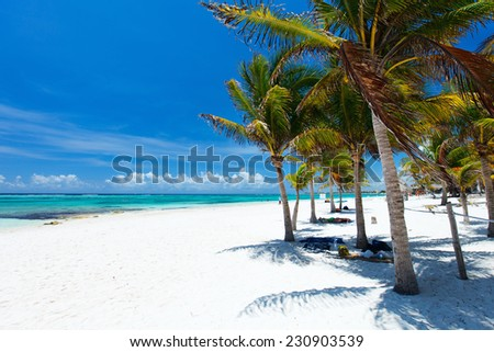 Beautiful white sand beach in Akumal Mexico - stock photo