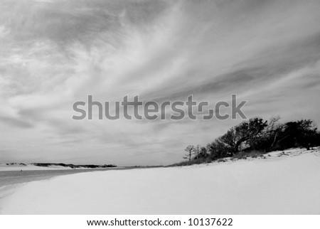 Beautiful white sandy beach on preserved land - stock photo