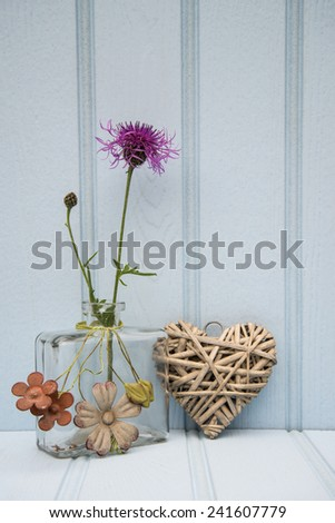 Beautiful wild flower in vase with heart still life love concept - stock photo