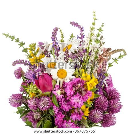 Beautiful Wild Flowers Bouquet. Wildflowers - stock photo