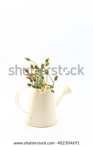 beautiful wild flowers with in watering can on white background