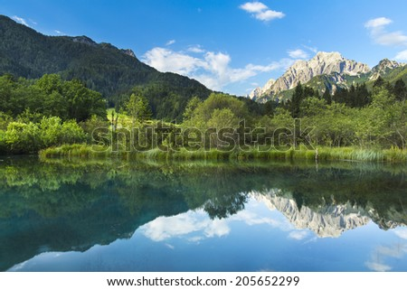 Beautiful wilderness in the middle of the alps - stock photo