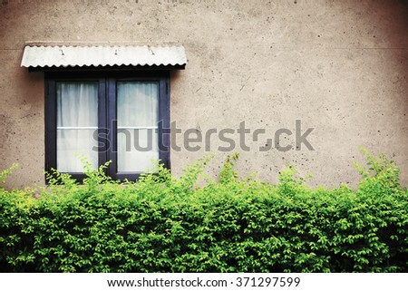 Beautiful window on green wall, vintage or retro filtered. - stock photo