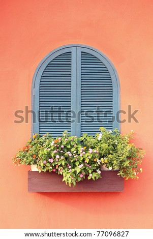 Beautiful window with flower - stock photo