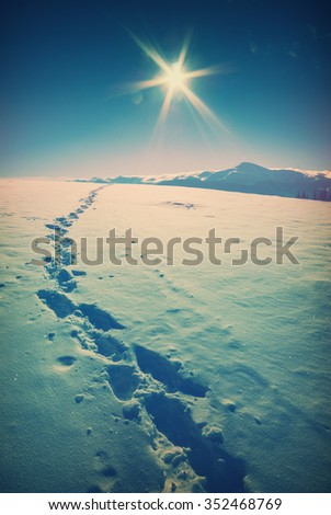 Beautiful winter in a Carpathian mountain valley with track on a fresh snow. Majestic landscape. Ukraine, Europe. Vintage colors - stock photo