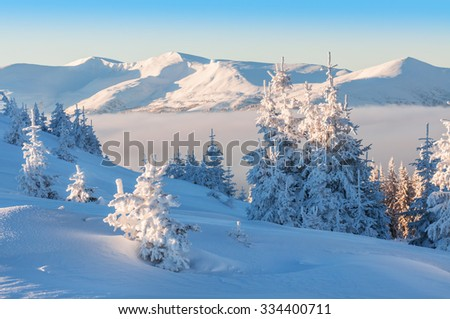 beautiful winter in high mountains