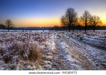 Beautiful Winter landscape across frosty fields towards silhouette trees on horizon into stunning colorful sunrise