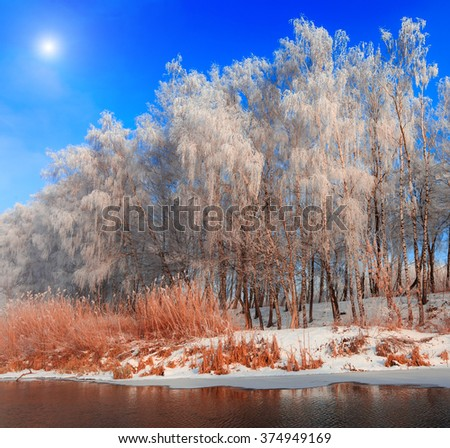 beautiful winter landscape. frost tree in the river . calm frosty morning in the bright sun. beauty world. winter scene - stock photo