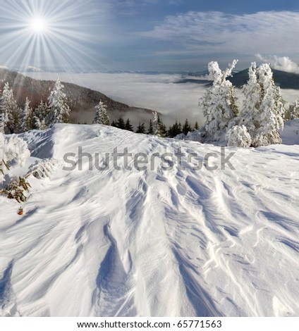 Beautiful winter landscape in the Carpathian mountains - stock photo