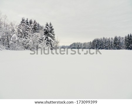 Beautiful winter landscape in the forest outside