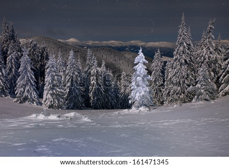 Beautiful winter landscape in the mountains at night - stock photo