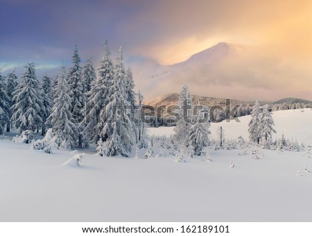 Beautiful winter landscape in the mountains. Sunrise.