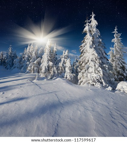 Beautiful  winter landscape in the mountains with the stars
