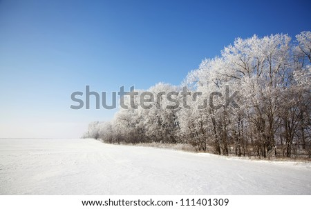 Beautiful winter landscape with meadow and forest - stock photo
