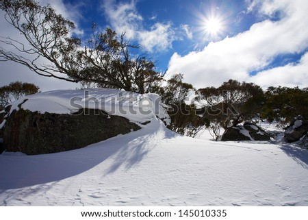 Beautiful winter landscape with snow and sun rays. - stock photo
