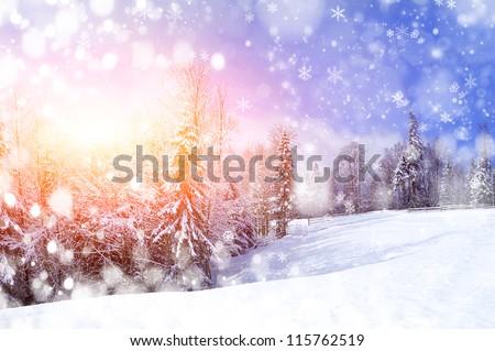 Free photo: Winter Landscape, Snow, Reed - Free Image on Pixabay ...