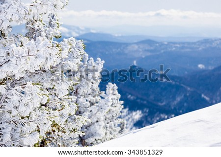 Beautiful winter landscape with snow covered trees. Mountain Shoriya. Sheregesh. Russia - stock photo
