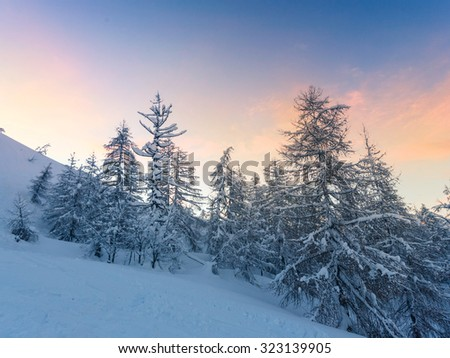 Beautiful winter landscape with snow covered trees -Slovenia