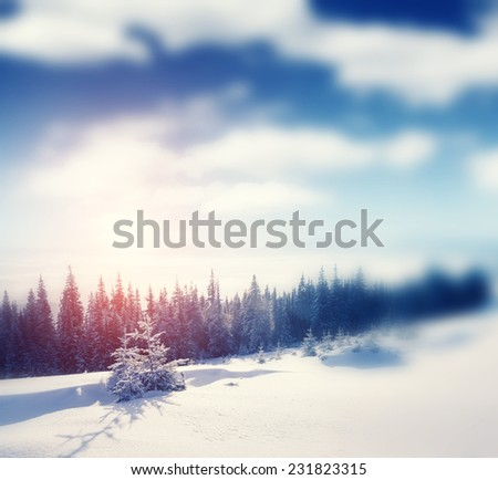 Beautiful winter panorama with snow covered trees. Retro style filter. Instagram toning effect. Tilt Shift blur effect. - stock photo