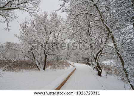 Beautiful winter scene near Yauza river after heavy snowfall, Babushkinkiy district, Moscow.