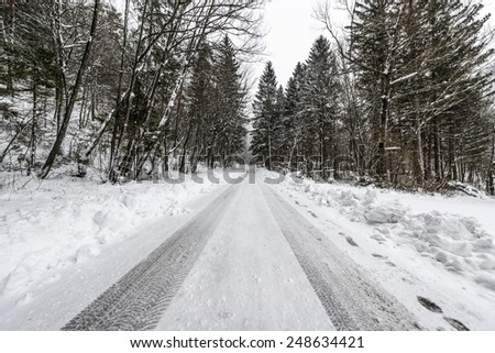 Beautiful winter scenery by the lake and the River. Heavy snow and blizzard is giving the scenery a unique appearance and look. Forest road in the middle of the winter. - stock photo