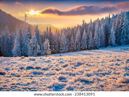 Beautiful winter sunrise in the mountains - stock photo