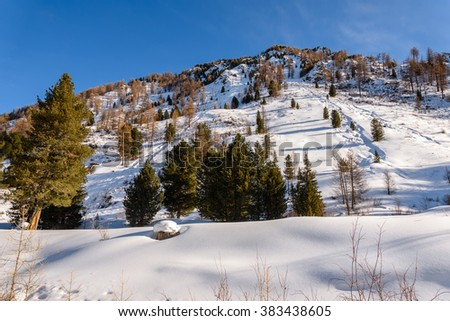 Beautiful winter views of the mountainside covered with trees and snow with traces in the snow against the blue sky - stock photo