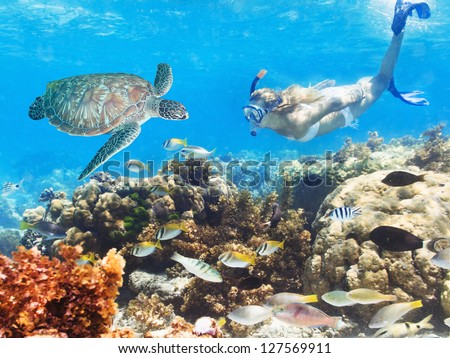 Beautiful woman diver swimming among the coral reef - stock photo