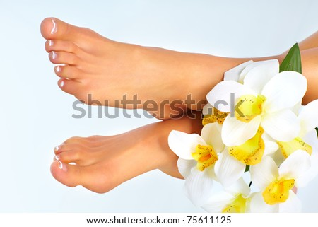 Beautiful woman feet. Over blue background. Spa. - stock photo