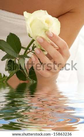 beautiful woman hand with rosebud in water - stock photo