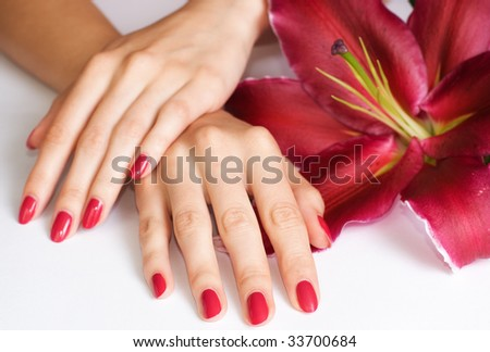 Beautiful woman hands with pink manicure and lily - stock photo