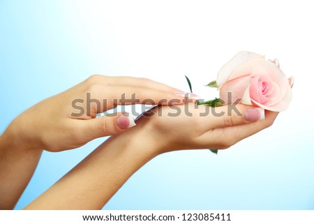 Beautiful woman hands with rose, on blue background - stock photo