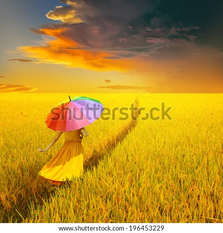 Beautiful woman holding multicolored umbrella in Yellow rice field and rain cloud sunset  - stock photo