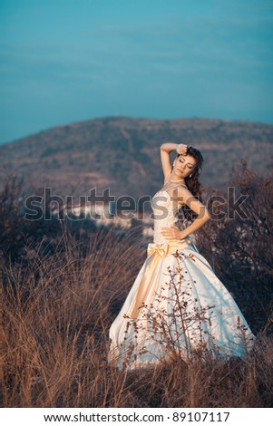 beautiful woman in wedding dress in the field - stock photo