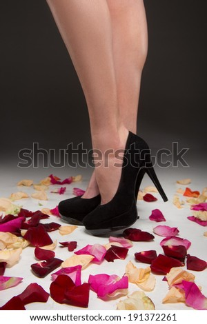 Beautiful Woman Legs. Attractive woman legs with black high heels on red roses petals - stock photo