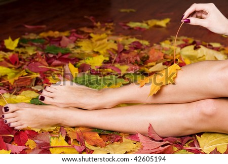 Beautiful woman manicure and pedicure in autumn leaves - stock photo