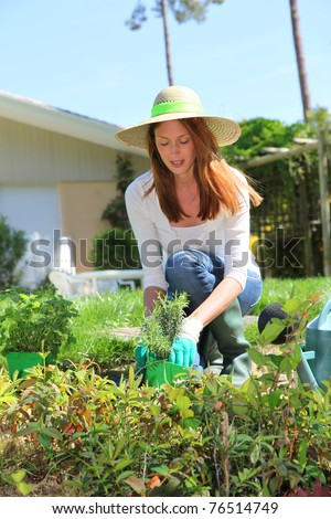 Woman Planting Flowers Stock Photos Images Pictures