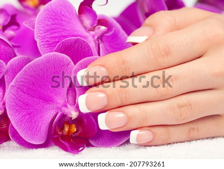 Beautiful woman's hand with perfect french manicure touching  purple orchid flowers