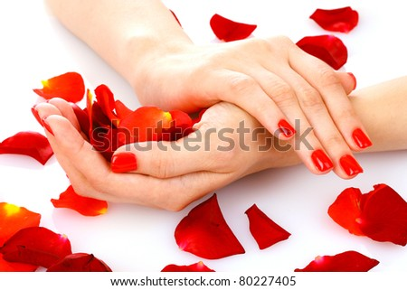 beautiful woman's hands and rose petals isolated on white