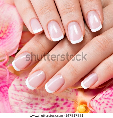 Beautiful woman's nails with beautiful french manicure   - stock photo