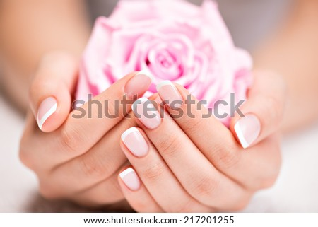 Beautiful woman's nails with beautiful french manicure  and pink rose - stock photo