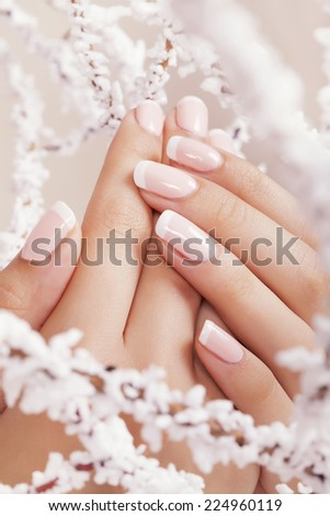 Beautiful woman's nails with french manicure. - stock photo