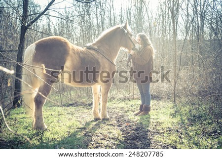 Beautiful woman stroking a brown horse - Pretty caucasian model woth stallion outdoors - stock photo