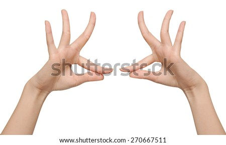 beautiful women's hand  isolated is on a white background - stock photo