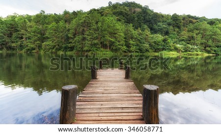 Beautiful Wooden bridge for relaxation