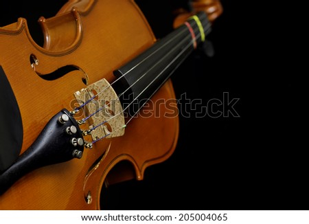beautiful wooden violin isolated showing strings and bridge - stock photo