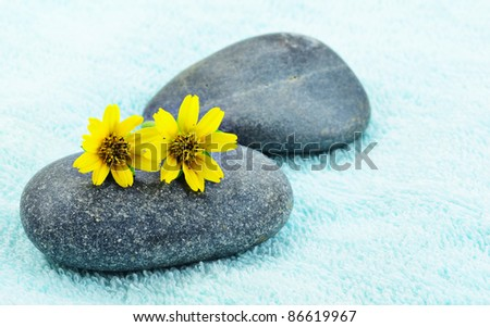 Beautiful yellow daisy flower on stone spa concept - stock photo