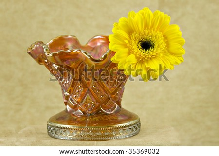 Beautiful Yellow Flower Orange Gold Carnival Stock Photo 35369032