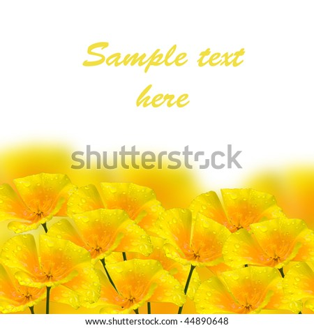 beautiful yellow flower with drop closeup - stock photo